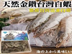 台灣金鑽白蝦