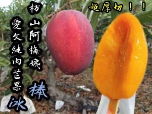 枋山阿梅姨愛文純肉芒果冰棒(超厚切)