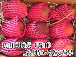(40年老欉)枋山阿梅姨(廣伯)-嚴選特A+愛文芒果